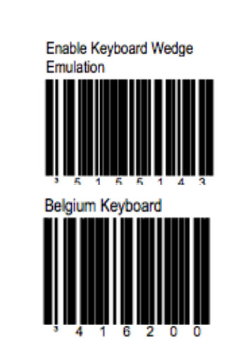 barcodesMS.jpg